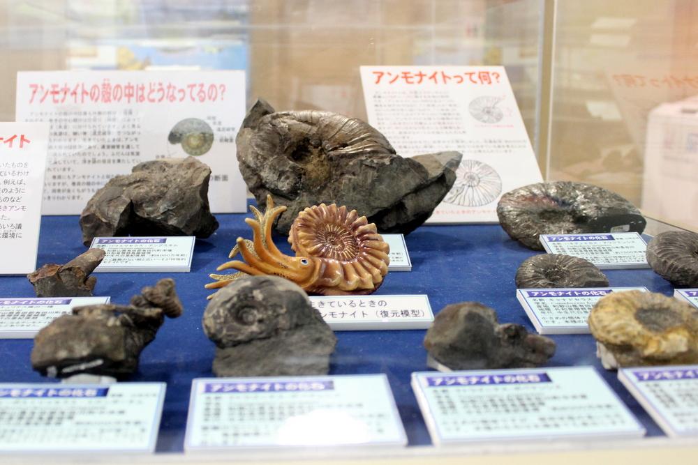 http://pangea-note.com/museum/blogimg/1-IMG_4235.JPG