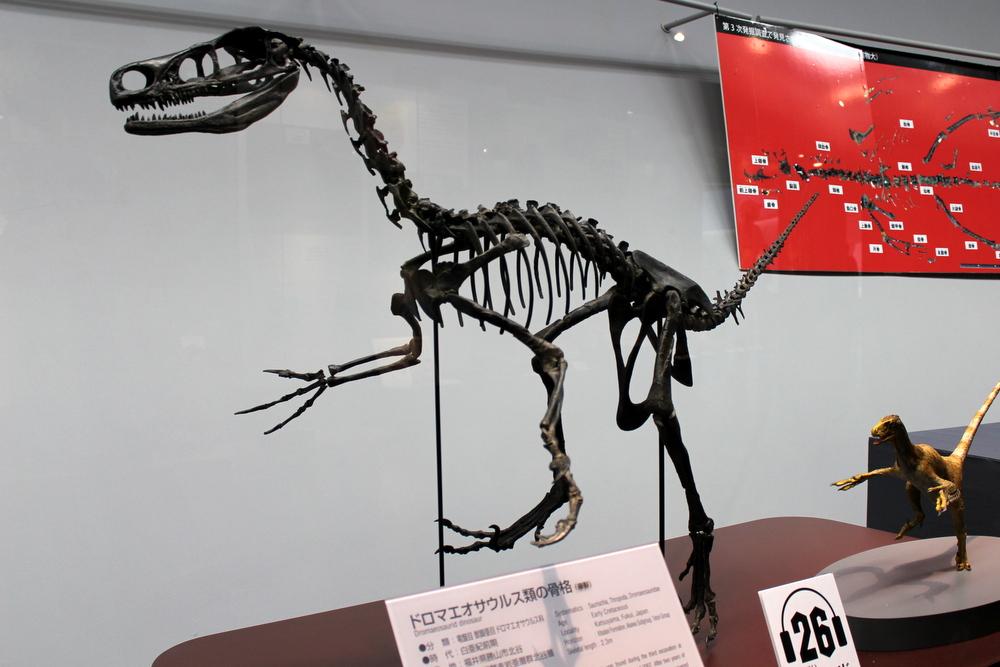http://pangea-note.com/museum/blogimg/1-IMG_4354.JPG