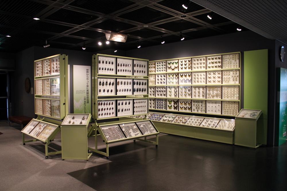 http://pangea-note.com/museum/blogimg/1-IMG_4720.JPG
