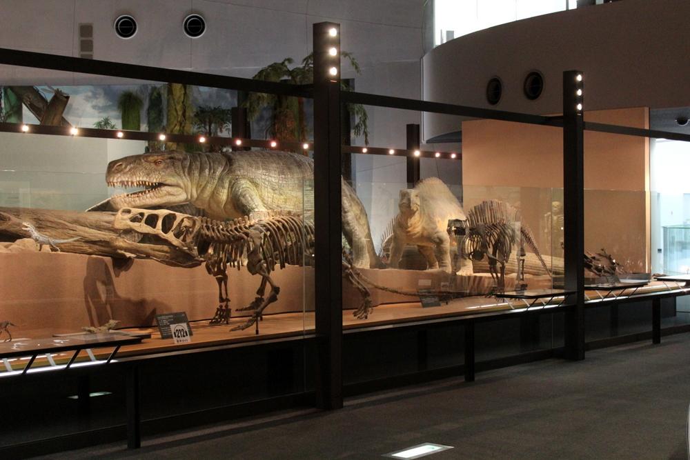 http://pangea-note.com/museum/blogimg/1-IMG_6608.JPG