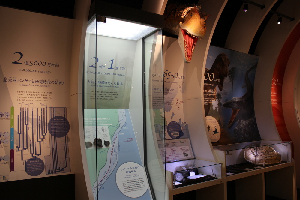 http://pangea-note.com/museum/blogimg/1-IMG_6786.JPG