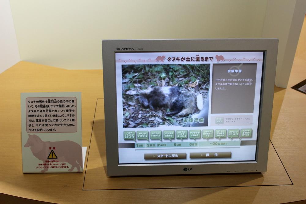 http://pangea-note.com/museum/blogimg/1-IMG_7794.JPG