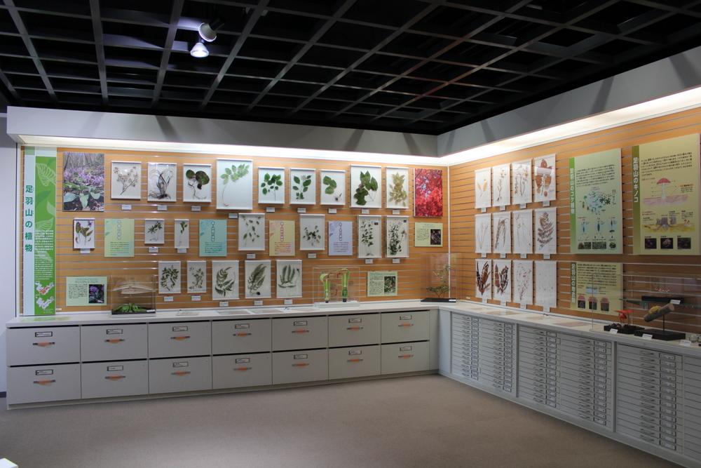 http://pangea-note.com/museum/blogimg/1-IMG_7798.JPG