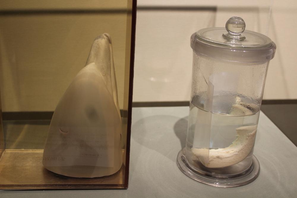 http://pangea-note.com/museum/blogimg/1-IMG_9125.JPG