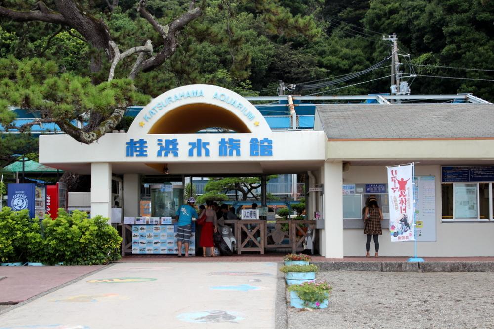 http://pangea-note.com/museum/blogimg/1-IMG_9529.JPG