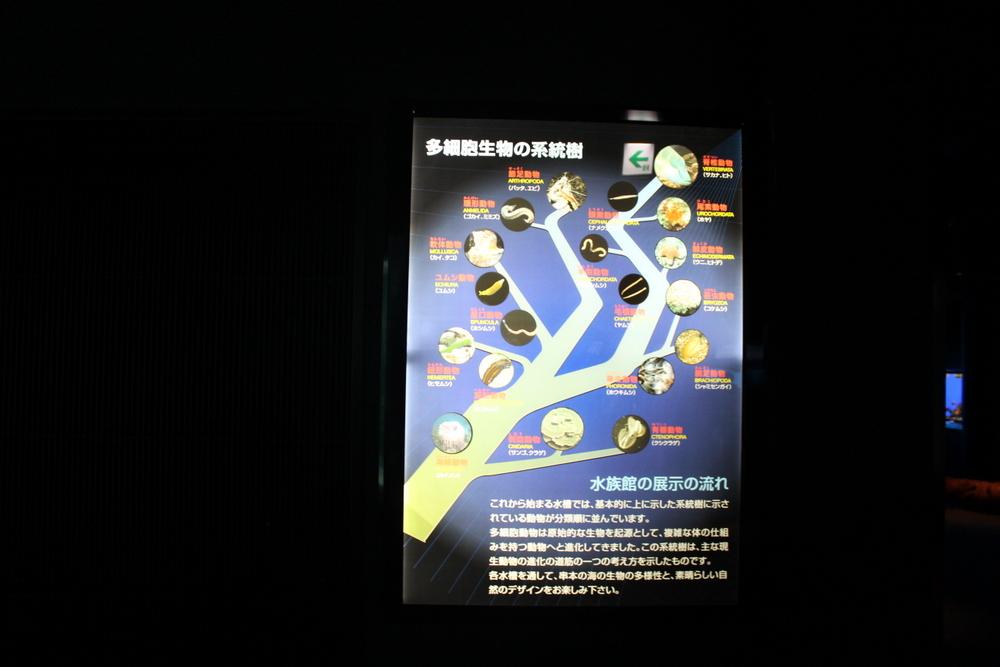 http://pangea-note.com/museum/blogimg/1-IMG_9558.JPG