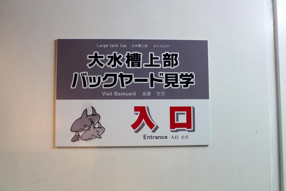 http://pangea-note.com/museum/blogimg/1-IMG_9594_2.JPG