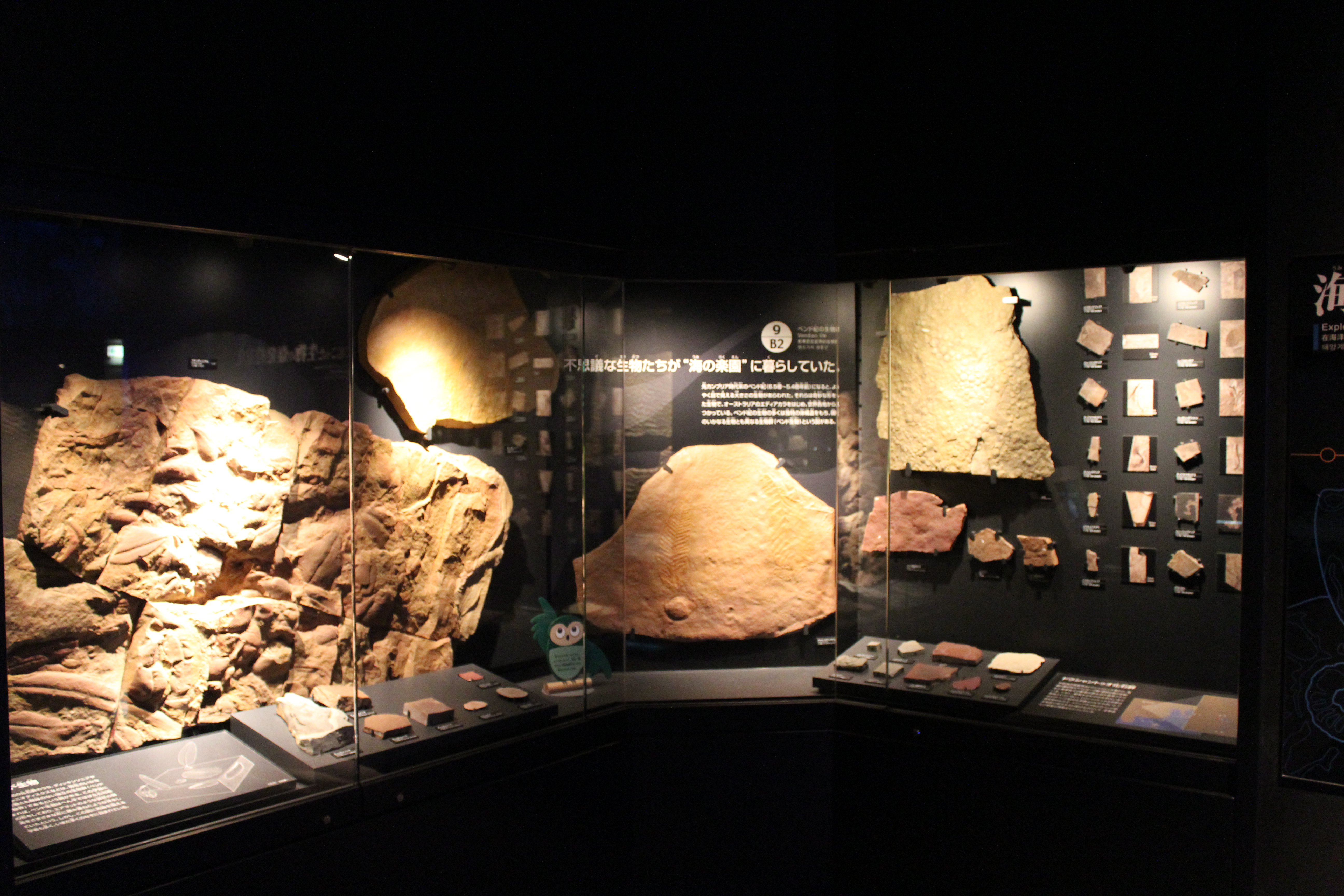 http://pangea-note.com/museum/blogimg/IMG_0465.JPG